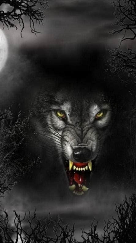 big bad wolf wallpapers   zedge