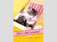 Doppelkarte Geburtstag vergessen schlafende Katze 'Hab's