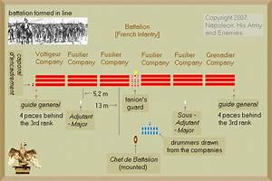 Napoleonic Regiment Diagrams