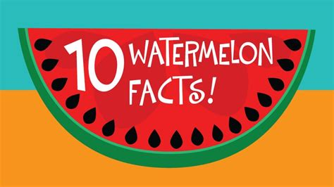 5 Fun Facts About Watermelons