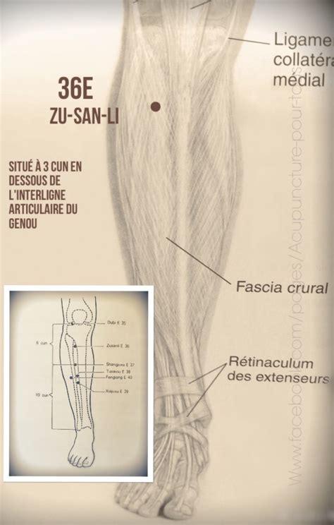 acupuncture grossesse si鑒e acupuncture et jambes lourdes acupuncture familiale beloeil mont hilaire