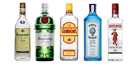brands of gin interesting facts about gin just fun facts