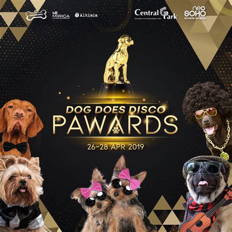 dog  disco pawards central park mall jakarta