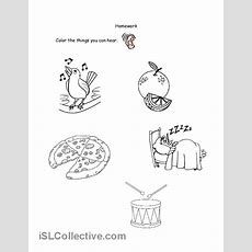 13 Best Images Of Hear Here Worksheet  Hearing Sound Worksheets, Hearing Sound Worksheets And