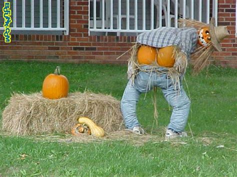 funny halloween images pictures    fun