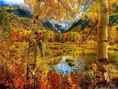 Autumn Scenes Night Lights Wallpapers 2560a 1920