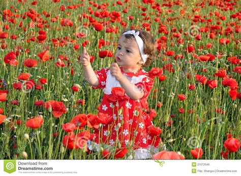 child roses children among flowers royalty free stock images image 21072549