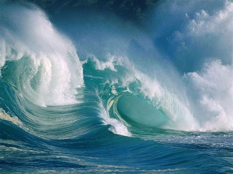 surfers enjoy huge swell   hawaiian islands