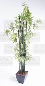 Fausse Plante Verte : bambou fausse plante verte gascon krukowski ~ Teatrodelosmanantiales.com Idées de Décoration