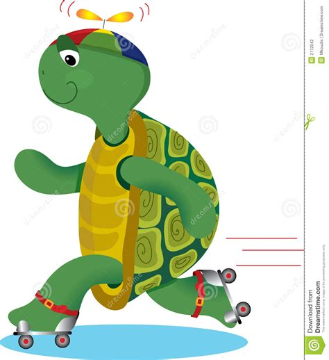 turtle  roller skate stock photography image