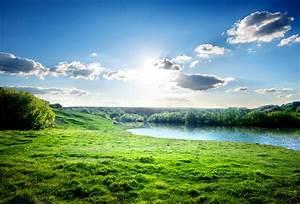 Scenery Photography Backdrops Beautiful Grassland Scenery Landscape Background Sale