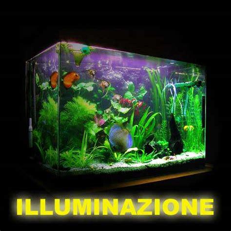 Illuminazione Acquario Dolce Kelvin Illuminazione