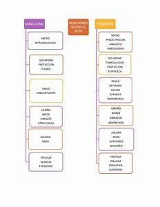 El modelo de los holones sexuales en niños y niñas de preescolar