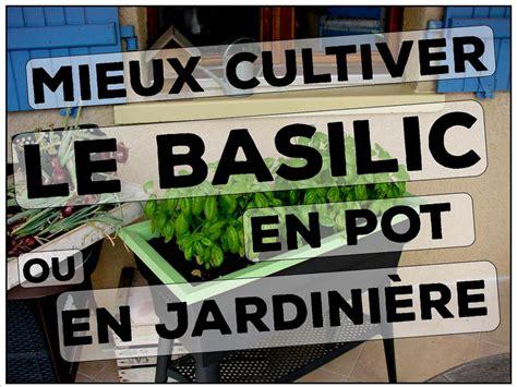 comment arroser le basilic en pot les jardins de dzprod evolution chronologique d un jardin d un particulier et de jardins