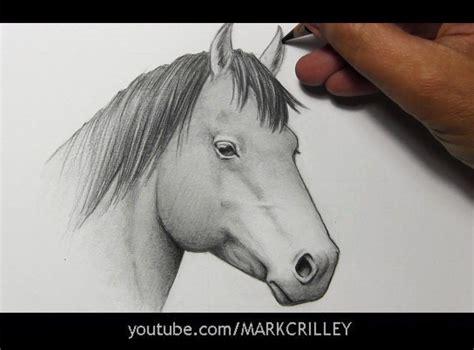 drawing time lapse horse kresleni drawings animal