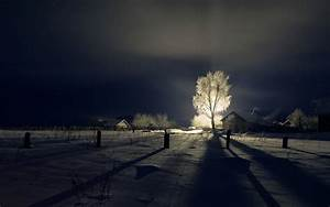 Beautiful winter landscape at night with a shining tree ...