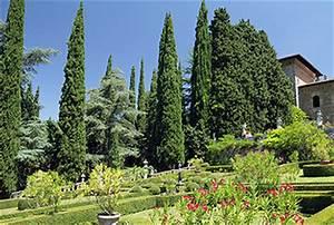Bäume In Kübeln : gestaltung mit zypressen ~ Lizthompson.info Haus und Dekorationen