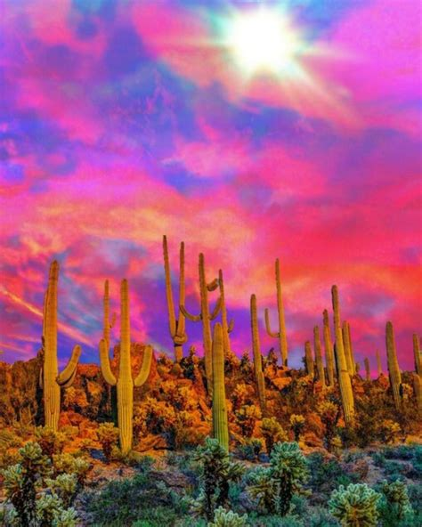 Psychedelic Cactus Tumblr