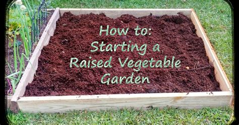 how to start a vegetable garden greneaux gardens how to starting a raised vegetable garden