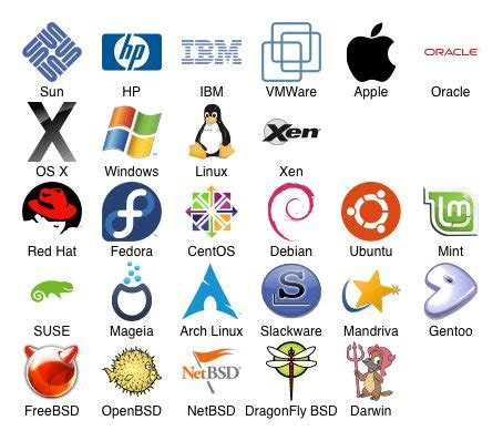 computer operating systems choices beyond microsoft