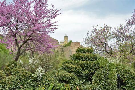 Botanischer Garten Tiflis by Tbilisi Botanical Garden