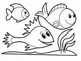 Trout Coloring Rainbow Pages Printable Fish Getcolorings Remarkable sketch template