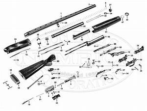 Winchester Model 12 Shotgun Parts Diagram