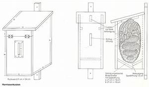 Kaninchenstall Selber Bauen Anleitung Kostenlos : insektenhotel selbst bauen bauanleitungen ~ Lizthompson.info Haus und Dekorationen