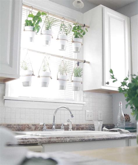 Indoor Window Herb Garden by 23 Cool Diy Wall Planter Ideas For Vertical Gardens The