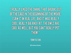 Quotes About Snake Friends. QuotesGram