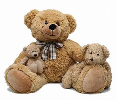 Teddy Bear Nounours Transparent Peluche Toys Bears
