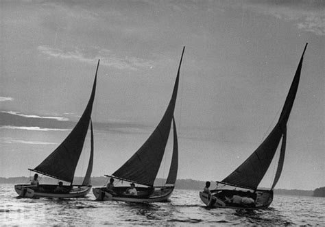 Sailboat Black And White by Black And White Sailboat Photography Pictures To Pin On