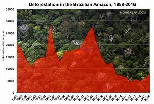 Is Brazil U2019s Forest Code Failing To Reduce Deforestation
