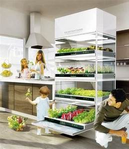 Indoor garden ideas for Indoor kitchen garden