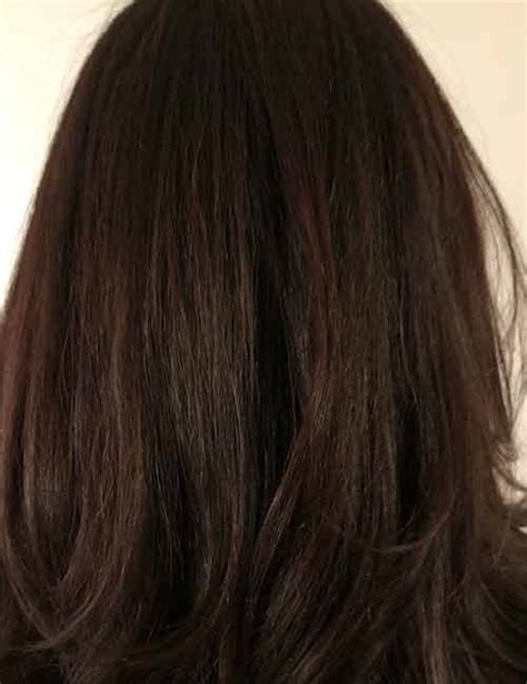 Different Shades Of Black Hair Color by Shades Of Brown Hair Color Which One Is For You