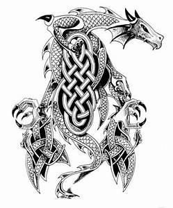 25+ best ideas about Celtic dragon tattoos on Pinterest ...