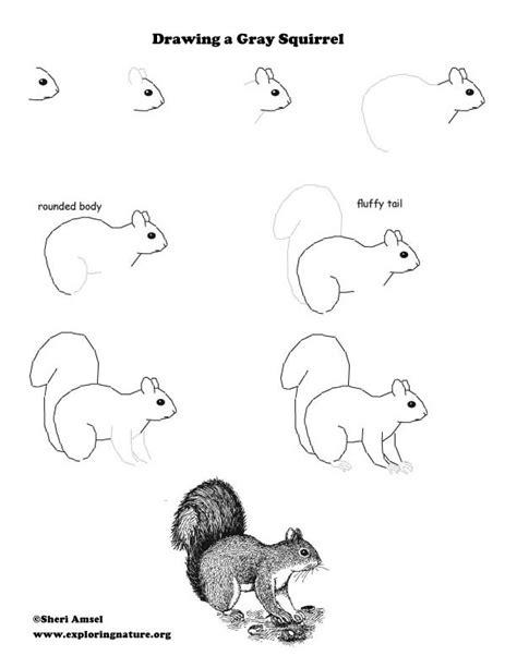 animal behavior study  kids watching squirrels