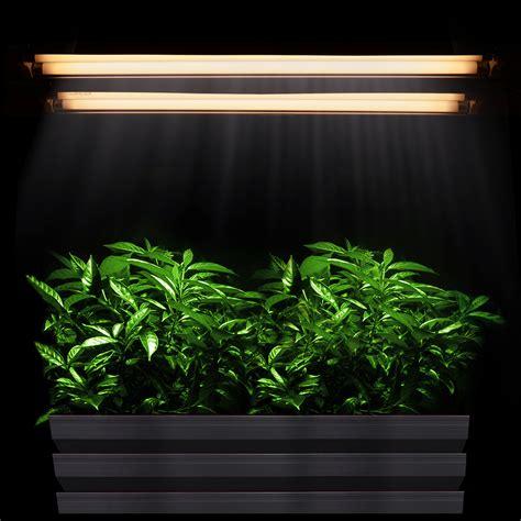 fluorescent light for plants indoor 2ft t5 grow light hydroponic 24 quot fluorescent tube veg bloom l kit 2 4 6 8 opt ebay