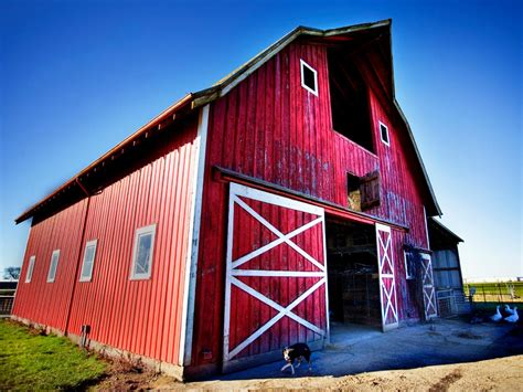 Barn Ideas by How To Prep Weathered Wood For Painting Diy