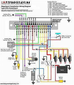 Sony Car Stereo Wiring Harness Diagram And Car Stereo