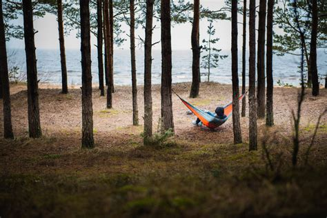 Hammock In The Trees by Independent Wolf Portable Cing Hammock With Three