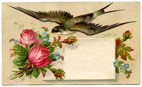 vintage image pretty calling card  bird