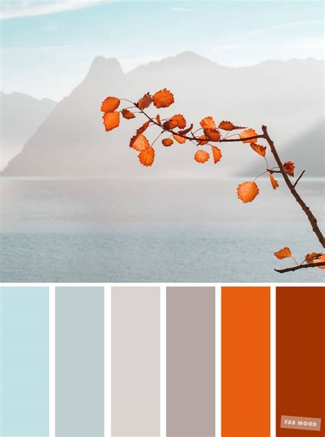 Burnt orange light blue and grey color palette ,colors of