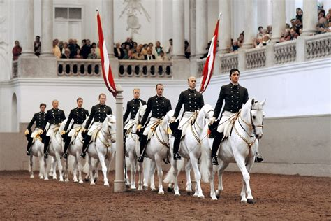 AEP - Our Clients - The Spanish Riding School of Vienna
