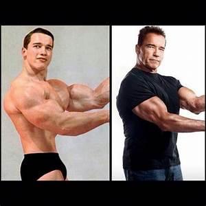 Pin by Andre on Arnold Schwarzenegger | Pinterest