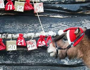 Podest Pferd Selber Bauen : adventskalender f rs pferd selber mache diy ~ Yasmunasinghe.com Haus und Dekorationen