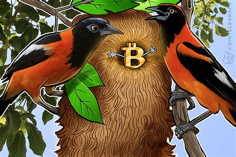 """By usethebitcoin in cryptocurrency news home venezuelas going trough a really tough time now. The """"Bolivar Bitcoin"""" is Coming, Steer Clear - Live Trading News"""