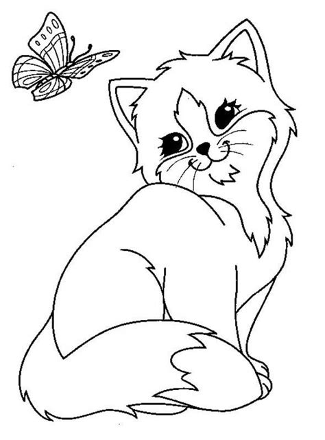 cat  butterfly coloring page  printable coloring