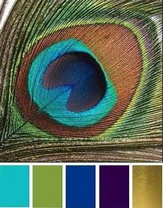 inspiration plume de paon mariage vintage pinteres With superior association de couleur avec le bleu 0 quelle couleur choisir dans ma maison