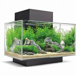 Aquarium Set Led : fluval aquarium set edge 2 0 led 23 l schwarz kaufen bei obi ~ Watch28wear.com Haus und Dekorationen